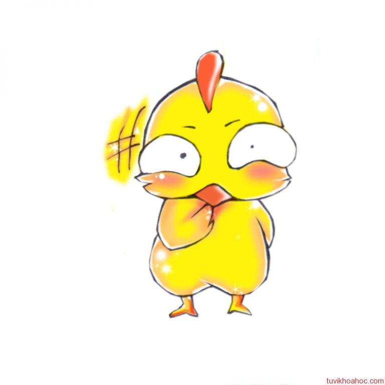 chicken3-768x768